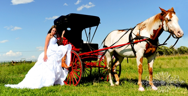 Bride with Horse and Carriage