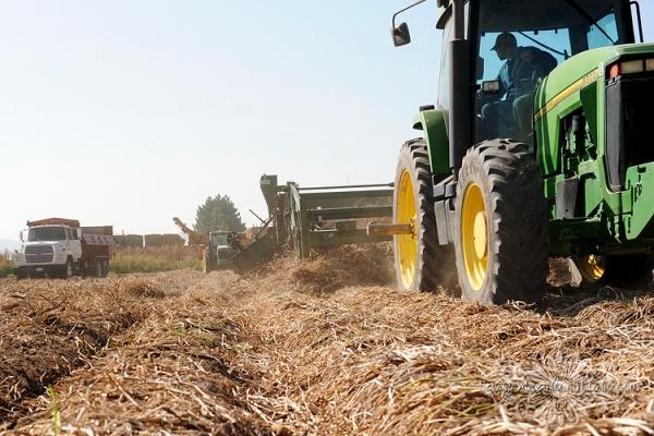 Harvest1032 web