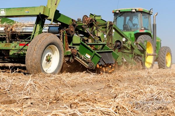 Harvest1047 web