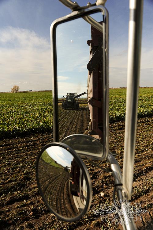 Harvest2311 web
